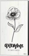 Anemone - the Flower of Sincerity Fine-Art Print