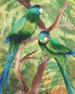 Tropical Birds II Fine-Art Print