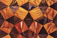 Cinquenta... Tigre Real, c.1963 Wall Poster
