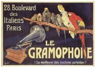 Gramophone Fine-Art Print