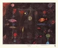 Fish Magic Fine-Art Print