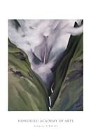 Waterfall  No. III 'Iao Valley Fine-Art Print
