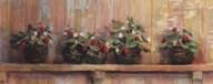 Strawberries in Pots Fine-Art Print