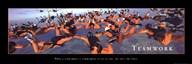 Teamwork - Sky Divers Fine-Art Print