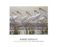 Bounty of the Wetlands (detail) Fine-Art Print