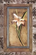 Day Lily I Fine-Art Print