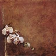 Orchid Series I (Simplicity I) Fine-Art Print