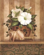 Petunia and Shell Fine-Art Print
