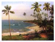 Tropical Coastline Fine-Art Print