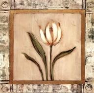 Del Sol V Fine-Art Print