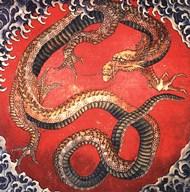 Dragon Fine-Art Print