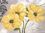 Colori Yellow I Fine-Art Print