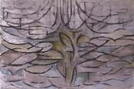 Flowering Apple Tree Fine-Art Print