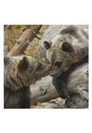 Alaska Chat (detail) Fine-Art Print