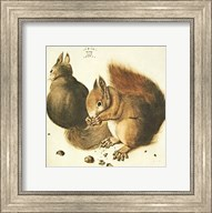 Squirrels Fine-Art Print