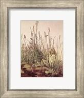 Tall Grass Fine-Art Print