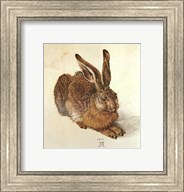 Young Hare Fine-Art Print