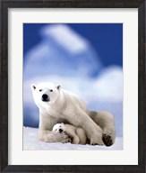 Polar Bear And Baby Fine-Art Print