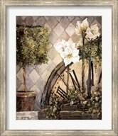 Hidden Grace II Fine-Art Print
