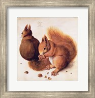 Squirrels, 1512 Fine-Art Print