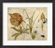 Flowers and Beetles Fine-Art Print
