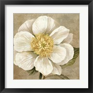 Up Close Cream Rose Fine-Art Print
