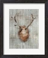 Antlers 2 Fine-Art Print