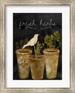 Fresh Herbs Fine-Art Print