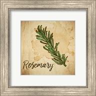Rosemary on Burlap Fine-Art Print
