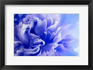 Blue Flower Fine-Art Print
