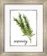 Watercolor Herbs V Fine-Art Print