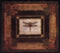 Dragonfly II Framed Print