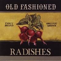 Old Fashioned Radishes Framed Print