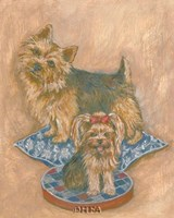 Terriers Framed Print