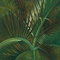 Exotic Passage Framed Print