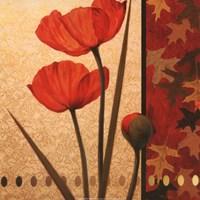 Poppy Red Damasque Framed Print