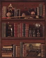 Librairie IV - Mini Framed Print