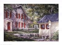 The Shade Garden Framed Print