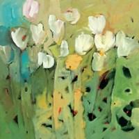 White Tulips II Framed Print