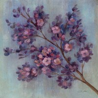 Twilight Cherry Blossoms II Framed Print