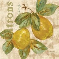 Rustic Fruit III Framed Print