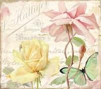 Florabella IV Framed Print