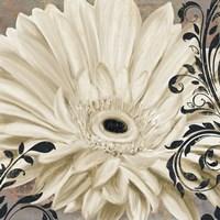 Winter White I Framed Print