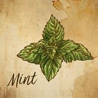 Mint on Burlap Framed Print