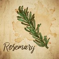 Rosemary on Burlap Framed Print