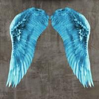 Angel Wings V Framed Print